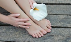 feet, hand, spa, nail, white flower, pure, photo, picture, widescreen