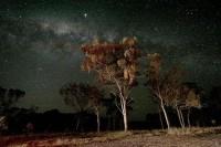 star_2.jpg (500×333)
