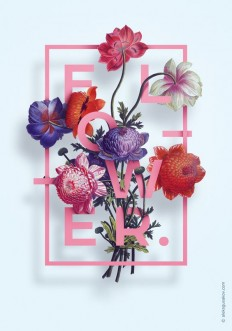 Fleurs design | ? Lovely package ? | Pinterest