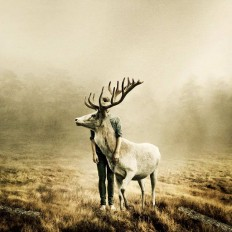 Mindblowing Fine Art Photography by Martin Stranka