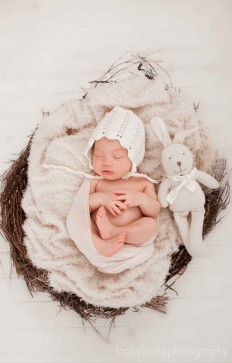 New Born 1 | New Born Photo Shoots Gallery