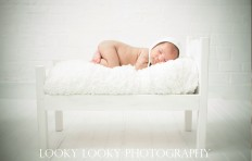 New Born 2 | New Born Photo Shoots Gallery