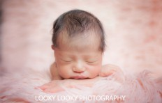 New Born 7 | New Born Photo Shoots Gallery