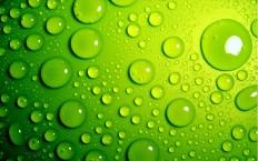 green bubble hd wallpaper #12   BeBeGi