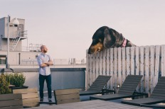 """Mitch Boyer Photoshops His """"Vivian the Dog"""" Into a Giant"""