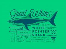 Great White Shark by N V D R - Dribbble