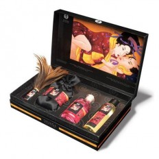 Shunga Tenderness & Passion Luxury Kit - it'spleaZure
