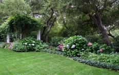 Back Yard Shade Garden - Traditional - Landscape - santa barbara - by Donna Lynn - Landscape Designer