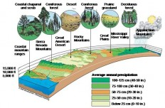 biomes - Google Search