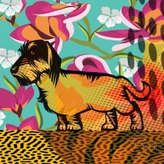 """Dachshund "" A Limited Edition Giclee Art Print (JB Studio)"