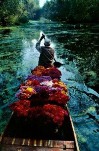 Photo:Idea:lighting, color & texture / Flower seller in Lake Dal, Kashmir, India (1986) by Steve McCurry