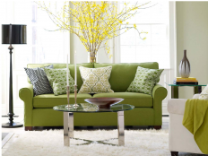 Green Living Room Ideas With Amazing Nature Theme - Bloggr Home