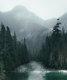 "Dylan Furst on Instagram: ""Dark days on Vancouver Island"""