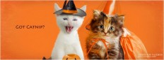 Happy Halloween Facebook Timeline Cover | EntertainmentMesh