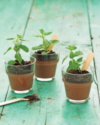 Potted Chocolate-Mint Puddings - Martha Stewart Recipes