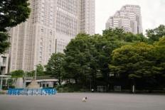 Elimination Method: Beautiful Street Photography by Mankichi Shinshi