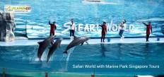 Fancy   Safari World with Marine Park Singapore Tours