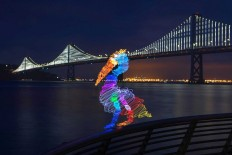 Animal LED Light Paintings by Darren Pearson
