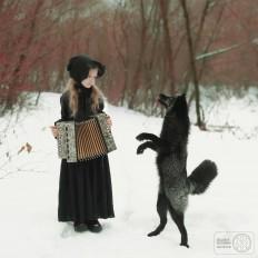 Fox Tales: New Portrait Series by Darja Bilyk
