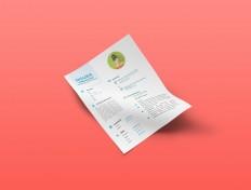 Free Infographic Resume AI Template - Free Download | Freebiesjedi
