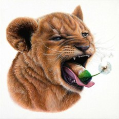 Meticulous Paintings of Animals and Objects by Jacub Gagnon