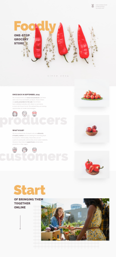 Foodly — One-Stop Food Store on Inspirationde
