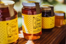 Terra Verde Honey is Proof that Low-Cost Productions Can Still Blow You Away — The Dieline - Branding & Packaging Design
