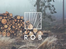 Wood Logo by Hannes Wizany on Inspirationde