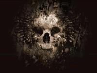 skull-wallpaper-skulls-8359631-1600-1200.jpg (1600×1200)