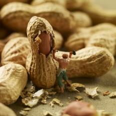 cacahuettes-1.jpg (1000×1000)