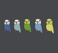 Budgie by parakeetart: T-Shirts & Hoodies | RedBubble