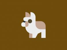 dog.png (800×600)