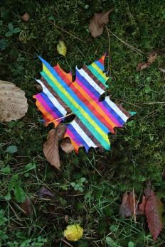 stripy+leaf.jpg (image)
