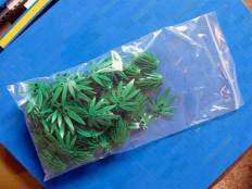 Lego-Marijuana - Nerdcore