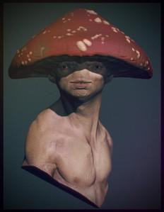 Toadstool Concept by jjvdb15 - CGHUB