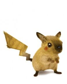 RLP: Pikachu | Flickr - Fotosharing!