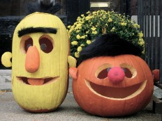 Bert & Ernie ~ Porch Pumpkins 2009 | Flickr - Fotosharing!