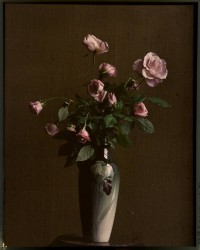 Pink roses in vase | Flickr - Photo Sharing!