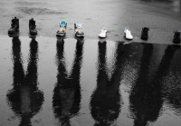 20 Fantastic Examples of Photos with Reflections
