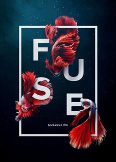 Fuse Collective on Inspirationde