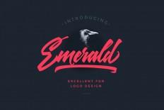 Emerald Script Font for Logo Design