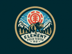 Element Bear by Curtis Jinkins