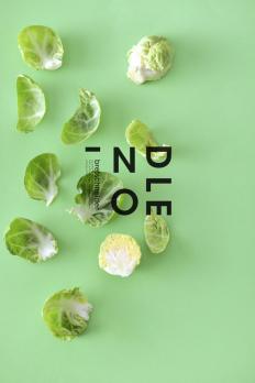 colour+food+design on Inspirationde