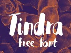 Tindra Free Typeface - Free Download | Freebiesjedi