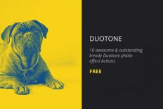 Free Duotone Photoshop Action - Free Download | Freebiesjedi