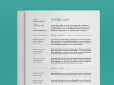 Minimal Resume Template for Any Industry - Free Resume Template | Smashresume