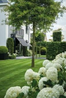 L'élégance du vert et blanc ! | Home Ideas | Pinterest