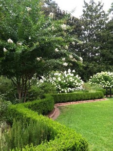 cottage meets semi formal | depot gardens | Pinterest