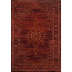 Safavieh Serenity Ruby/Gold 6 ft. x 9 ft. Area Rug - SER210B-6 - The Home Depot