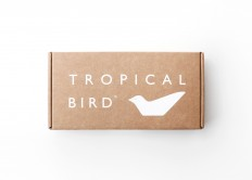 Tropical Bird on